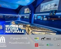Storie di una Balena | MuseiEmotivi_Lab